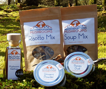 Our Products, Ballyhoura Mountain Mushroom