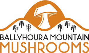 Ballyhoura Mountain Mushrooms Logo